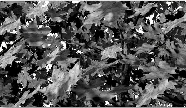 """""""Blattwerk 2"""", 2/3, 2012 Mischtechnik, 140 x 80 cm"""