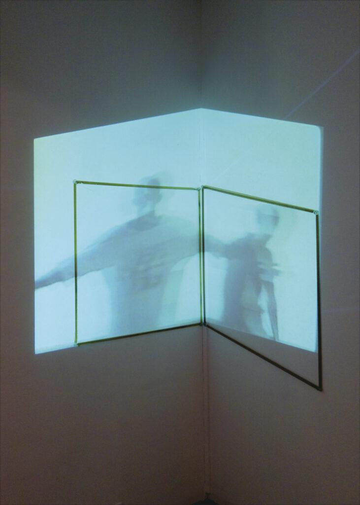 """Installation """"Xoanon"""", 2017"""